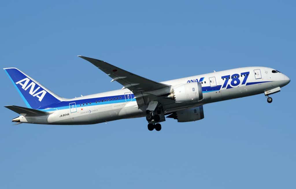 ANA_Boeing_787-881_Aoki-1